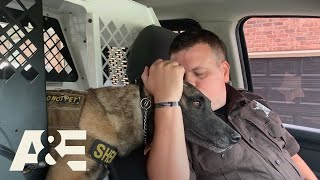 First and Only K9 Handler at Whitfield County Sheriff's Office | America's Top Dog (Season 1) | A&E