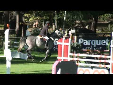 ♥ Racine de Celland- jumping horse  by Parco