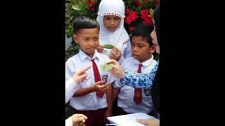 #IDL Makassar SyarifahFatimah SDN111Inp Polejiwa Maros SulSel