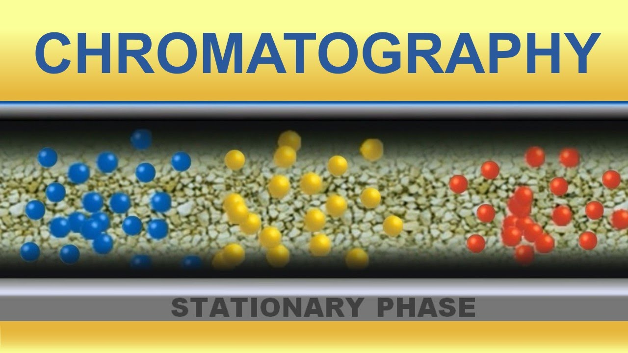 Chromatography  Animation (IQOG-CSIC)