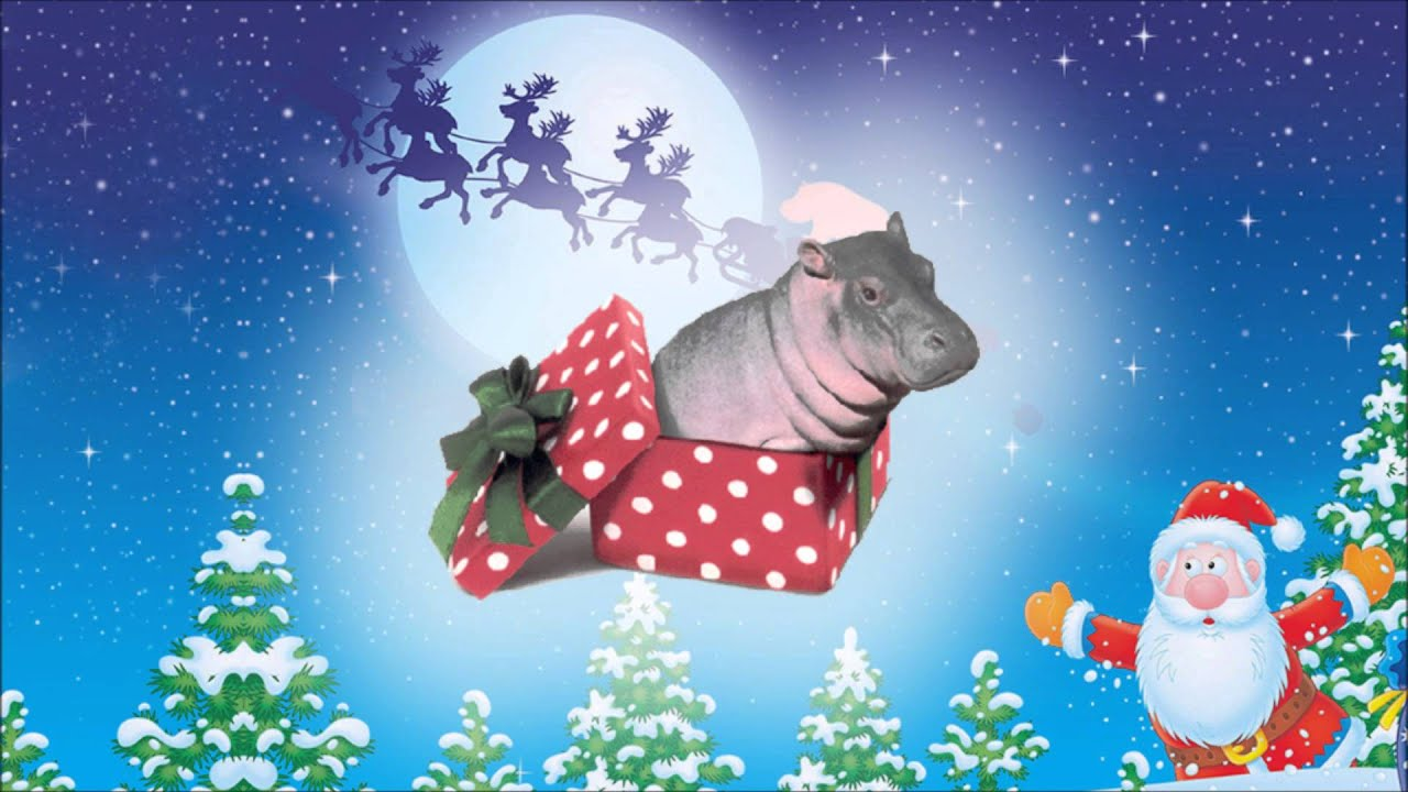 I Want a Hippopotamus For Christmas (ROCK VERSION) - Rocket ...