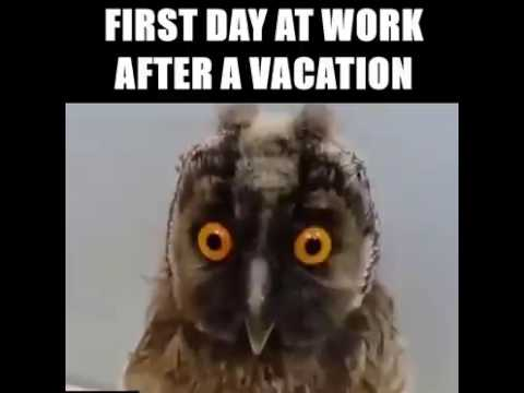 First Day Work After The Holidays Youtube