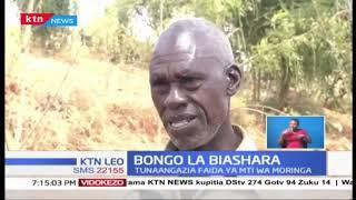 BONGO LA BIASHARA: Wakulima wa Makueni walima miti ya Moringa