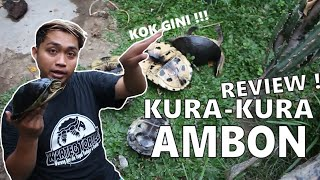 REVIEW KURA KURA AMBON | GIVE AWAY KURA DIAKHIR VIDEO !