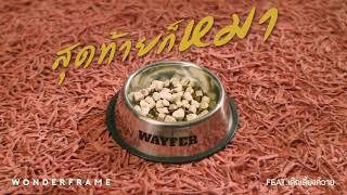 สุดท้ายก็หมา - WONDERFRAME  (feat. เด็กเลี้ยงควาย)