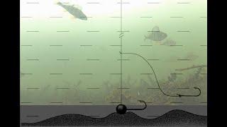 Снасть для не активной рыбы Когда рыба не берет пробуем поводок