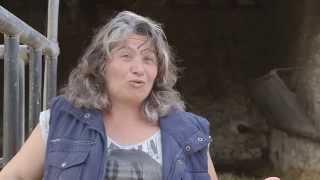 Interview Métiers - Véronique, éleveuse de bovins