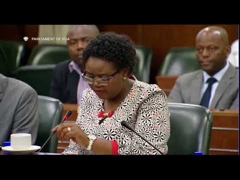 Communications Minister Kubayi briefs parliament committee: 23 Jan 2018 Part 1