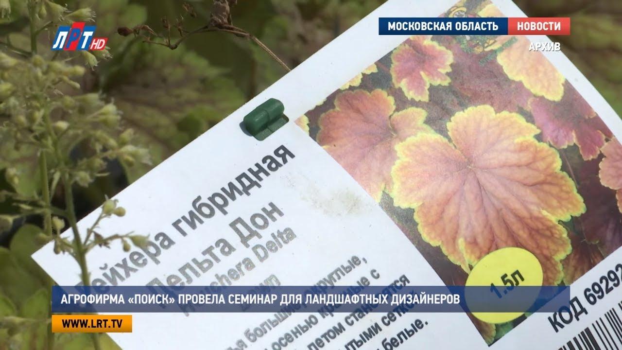 Трамадол  Закладка Курск MDMA Прайс Щелково