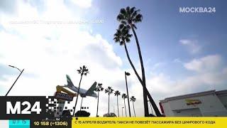 Актуальные новости мира за 13 апреля: жителей Лос-Анджелеса обязали носить маски - Москва 24