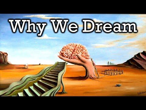 Dreams - Science Documentary