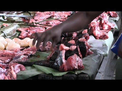 In the DRC bushmeat sales fall after Ebola death in Mbandaka