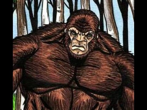 True encounter with Bigfoot! Richly illustrated by DredFunn
