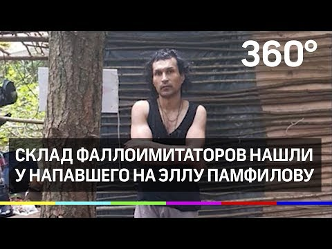 Склад фаллоимитаторов нашли у напавшего на Эллу Памфилову