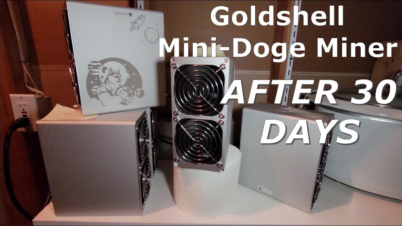 Mini Dogecoin + Litecoin Miner | After 30 Days!