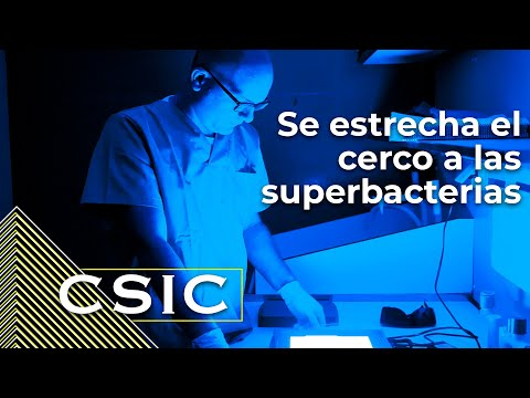 El CSIC estrecha el cerco a las superbacterias
