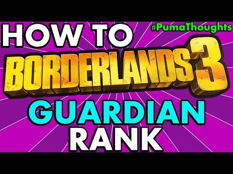 BEST SKILLS, PERKS And STATS For The GUARDIAN RANK SYSTEM In BORDERLANDS 3 #PumaThoughts