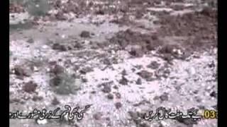 Fish farming in pakistan part-2..flv