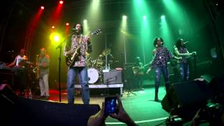 Julian Marley & The Wailers Reunion Band - REVOLUTION - 2015