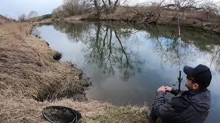 Река Истра ловля рыбы на поплавок апрель 2020