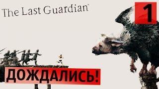 Это великолепно! ● Last Guardian #1 [PS4Pro]
