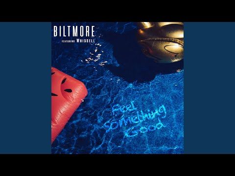 Biltmore - Feel Something Good mp3 ke stažení
