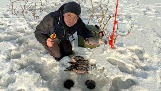 Рыбалка на карася зимой 2021 Зимняя рыбалка на карася Ловля карася на кивок зимой Лайфхак