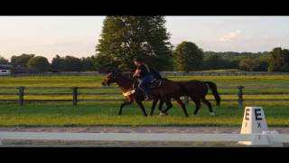 Lead Pony 101 Presented By Nupafeed: Learning To Lead