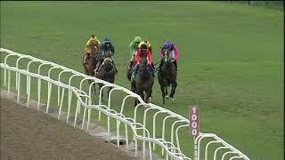Vidéo de la course PMU PRIX BEACH BEAUTY MILE