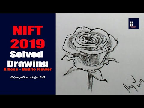 NIFT 2019 CAT - Solved Drawing