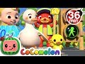 Traffic Safety Song | +More Nursery Rhymes & Kids Songs - CoCoMelon