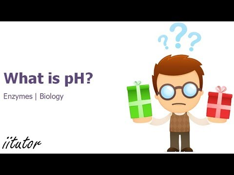 √ What is pH and why is it important? - Enzymes - iitutor