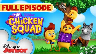 Chicken Squad to the Rescue / A Speedy Exit  | Full Episode | The Chicken Squad | Disney Junior