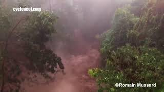BERGUITTA à la Réunion (2018)