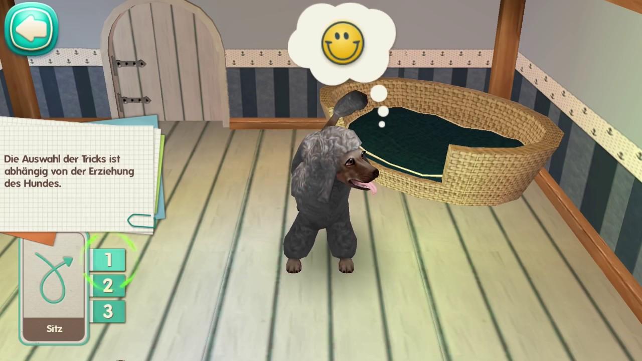 Dog Hotel App Deutsch Hunde Futtern Pflegen Im Hundehotel Spiel Mit Mir Games Youtube