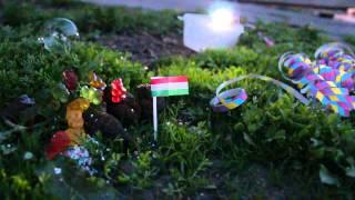 Hungari - Kedvesem (Zoohacker Remix)