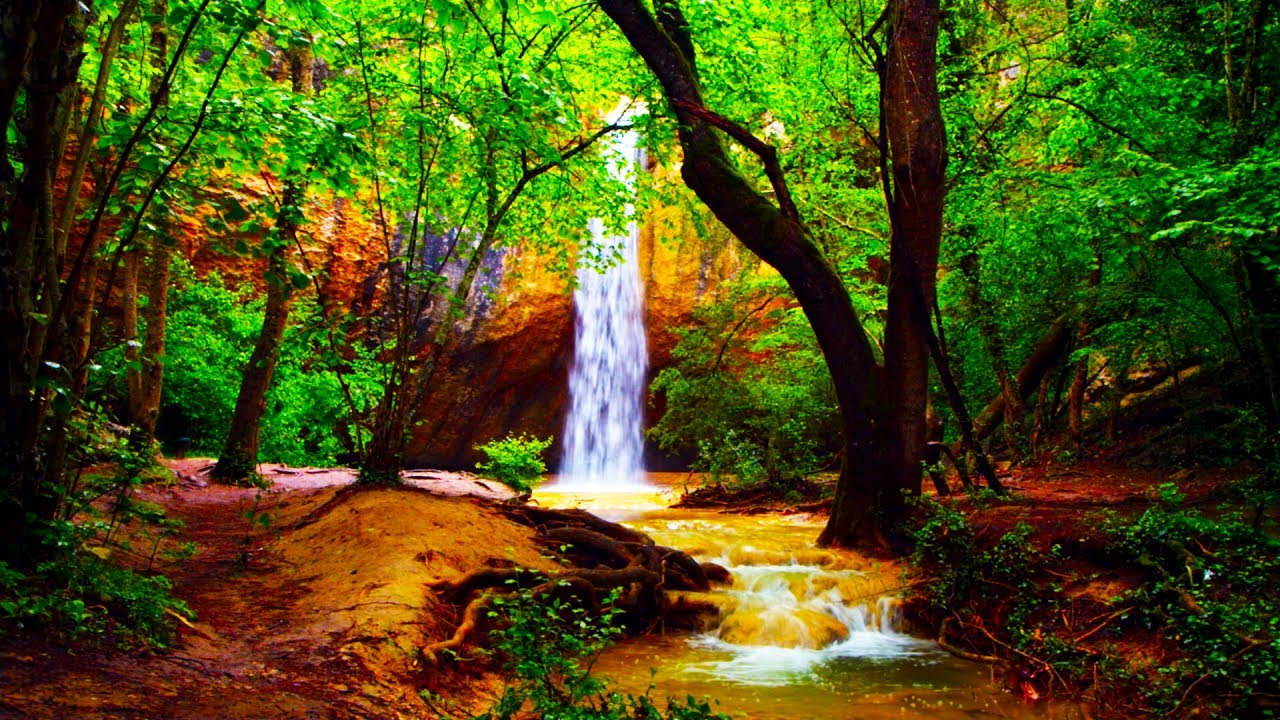 Don T Fall In Love Wallpaper Relaxing Zen Music And Nature Sounds Wooden Flute And