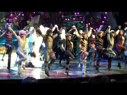 Mr Mistoffelees | CATS The Musical | Oasis of the Seas - 2016 - Matt Landel