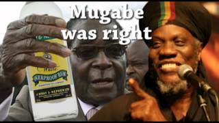 Mugabe was right