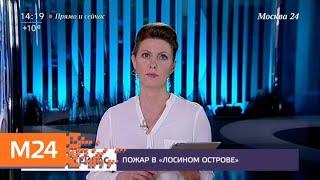 """Смотреть видео """"Прямо и сейчас"""": пожар в """"Лосином острове"""" - Москва 24 онлайн"""