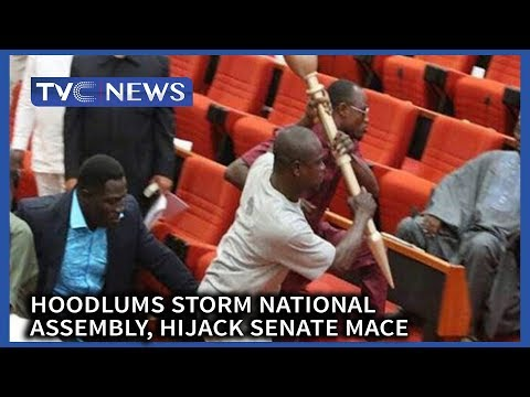 Hoodlums storm National Assembly, hijack Senate Mace