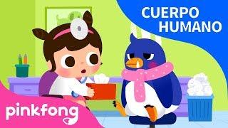Enfermedad Cuerpo Humano Pinkfong Canciones Infantiles