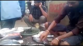 Bhartiya nagar