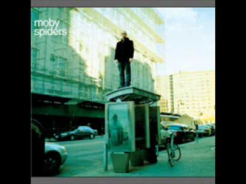 Moby-Spiders