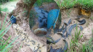 Top 3 Fishing Videos Make Fish Trap By Baskets Good Day For Fishing In Rainy Season tyriq 1256