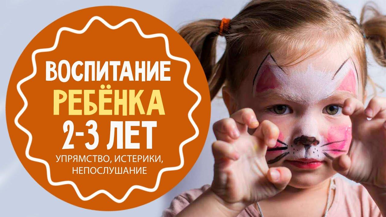 Почему у ребенка 2-3 года испортился характер