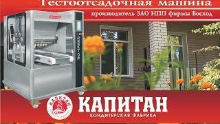 "Тестоотсадочная машина ""ВЕКТОР 220"""