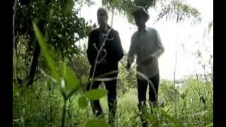 RPPN concilia produção de alimentos com preservação do ambiente
