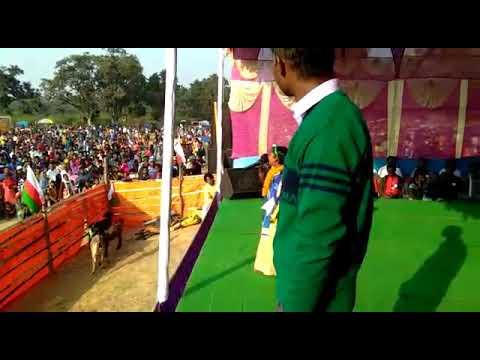 Tohe hamar Sona beti New Nagpuri song by New Singer