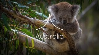 Australia|The Backpacking App